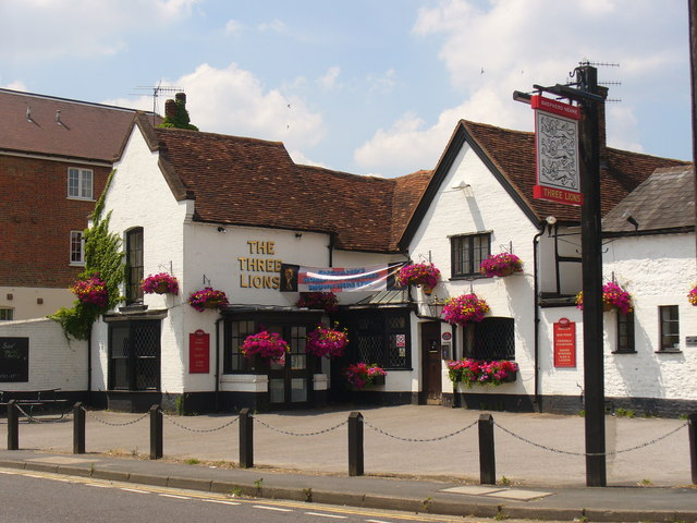 Three Lions Farncombe